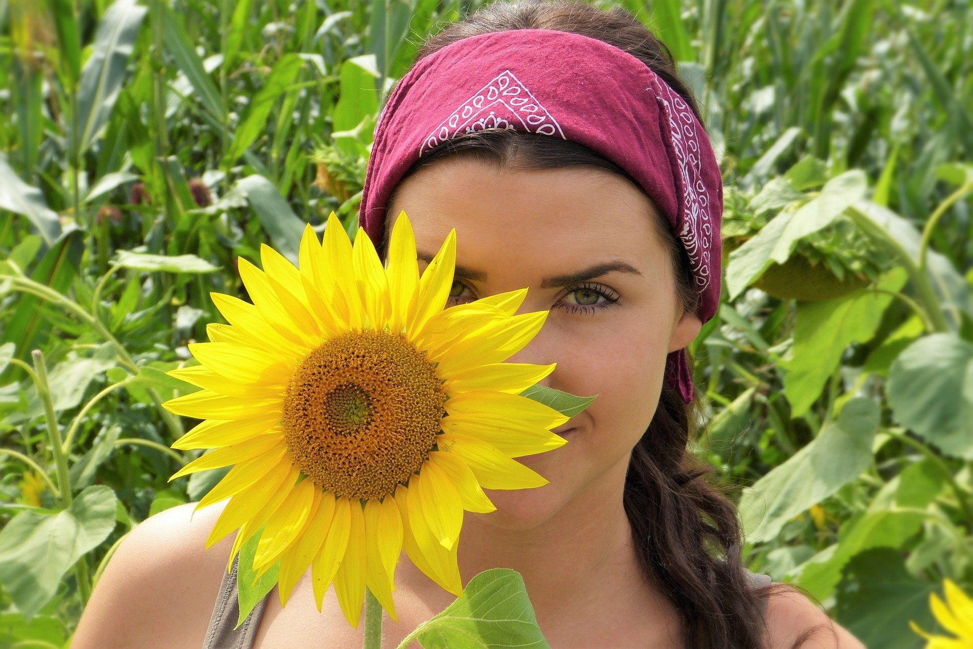 Sunflower with girl