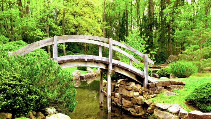 zen mastery nature bridge