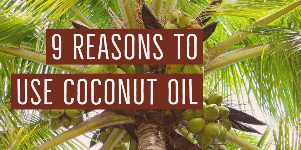 9 Reasons To Use Coconut Oil