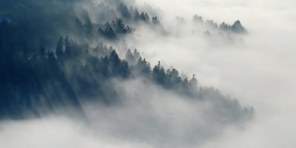 Mental Fog Potential Causes and Possible Cures
